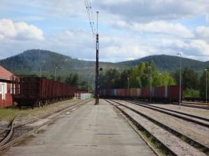 Ein Güterzug bringt Fracht in den Süden